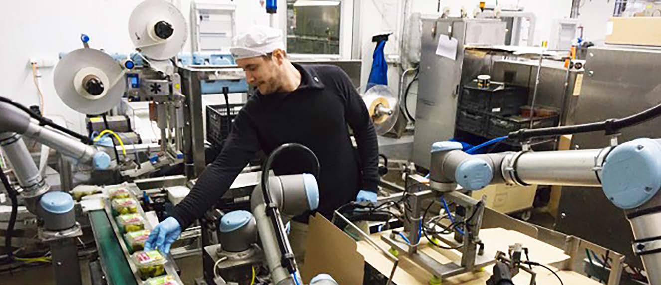 Robustní automatizaci nahradili uživatelsky přívětiví roboti